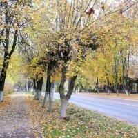 Климовская осень... :: Владимир Холодницкий