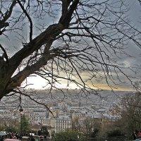 Зимний  Париж , :: Виталий Селиванов