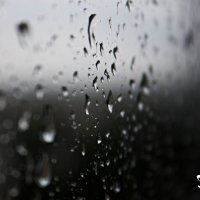 Капли дождя :: Любовь Дудкина