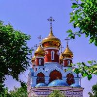 Купола кафедрального собора Илии Пророка. :: Виктор Иванович