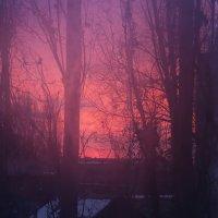 Рассвет в 5 утра :: Ksyusha Pav
