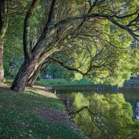 Осень... Отражение :: Viacheslav Birukov