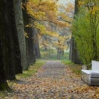 Про одинокую скамейку.... :: Юрий Цыплятников