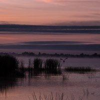 Рассвет над Неро :: Алена Белодедова