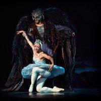 Swan Princess :: Roman Mordashev