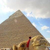 Тучи на пирамидами :: Евгений Васин