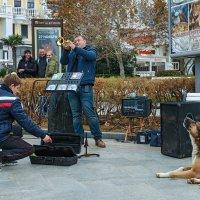 Жанровая сцена с трубачем и собакой :: Юрий Яловенко