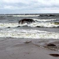 Валуны в море :: Svetlana Lyaxovich