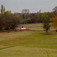 В южном парке города Дюссельдорф, ноябрь, :: Witalij Loewin