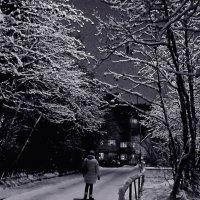 Вечерняя прогулка... :: Анна Приходько