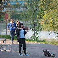 Талант  тоже  хочет  кушать ! :: Виталий Селиванов