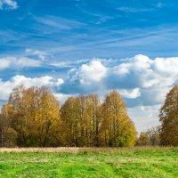 осень в Рузе :: Андрей Куприянов
