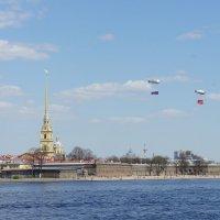 Вид на Петропавловскую крепость :: Елена Павлова (Смолова)