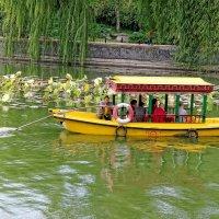 Пекин, парк Бэйхай :: Евгений Васин