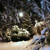 снег :: Алексей Совалев