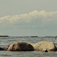 Залив :: Владимир Гилясев