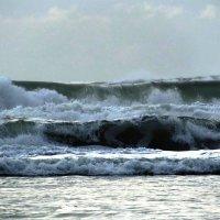 Тихий океан :: Ольга Швец