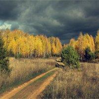 Дорога на северо-восток.. :: Алексей Макшаков