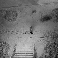Одинокий прохожий :: Роман Мещеряков