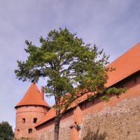 Тракайский замок. :: Юленька Шуховцева*