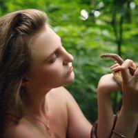 Однажды в лесу... :: Александр Маточкин