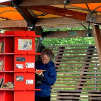 В библиотеке парка остров Татышев :: Екатерина Торганская