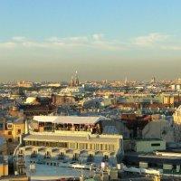 Питерские  крыши . :: Артур
