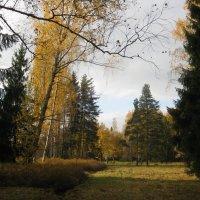 Осень в Павловске. :: Лариса (Phinikia) Двойникова