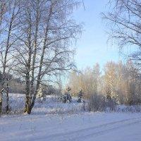 Морозное утро. :: Андрей Вычегодский