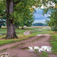 После дождя :: Любовь Потеряхина
