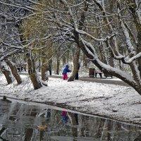 Тропинка у озера :: Viacheslav Birukov
