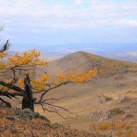 Осень в Тажеранах :: Владимир Собардахов