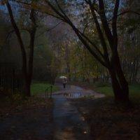 Вечер (СЕРИЯ)3 :: Андрей Михайлин