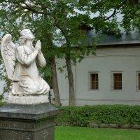 Молящийся ангел :: Константин Поляков