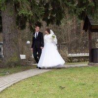 Свадьба :: Владимир Корольков