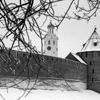 Новгородский кремль :: Ольга Лиманская