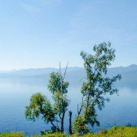 На Байкале 13 :: Виталий