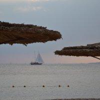 Плывет, плывет кораблик.. :: Ирина