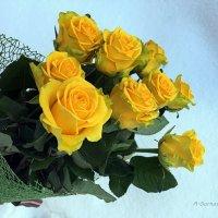 Желтые цветы дарят ярким и одаренным личностям. :: Anna Gornostayeva