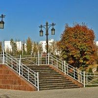 Городской пейзаж :: Светлана