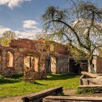 В дворике средневекового замка :: Игорь Вишняков