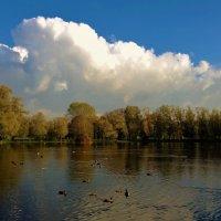 Осенняя идиллия на Большом пруду... :: Sergey Gordoff