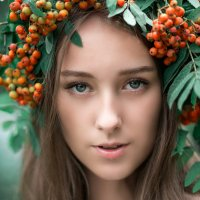 Рябина :: Viktoriya Burkova