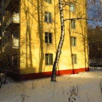 К зиме готовы! :: Андрей Лукьянов