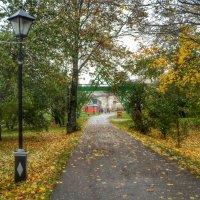 Осень золотая.. :: Игорь Карпенко