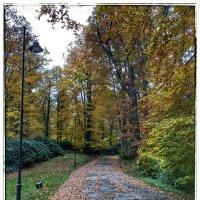 Парк около замка Ксенз :: Николай Милоградский