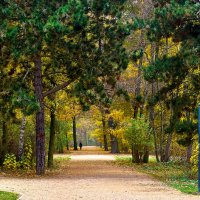 парк в Берлине :: вадим