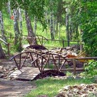 Мостики в парке :: Вера Щукина