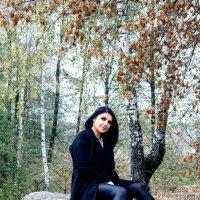 Краски осени :: Ирина Ширма