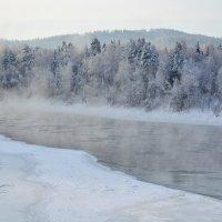 Бия, мороз! :: Татьяна Клименко